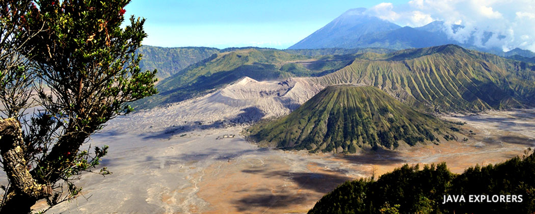 tour and travelling to bromo